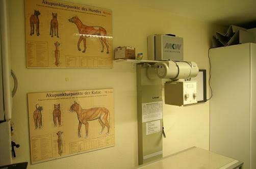 Akupunktur / Röntgen